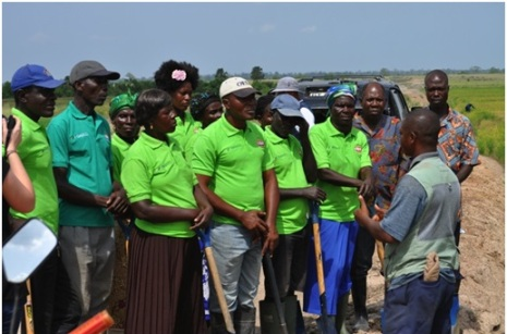 Local residents undergo training on a GADCO nucleus farm.